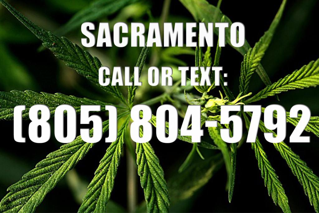 Sacramento Clones for Sale