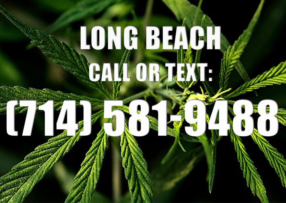 Long-Beach-Clones-for-Sale