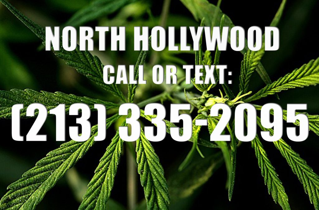 North-Hollywood-Clones-for-Sale