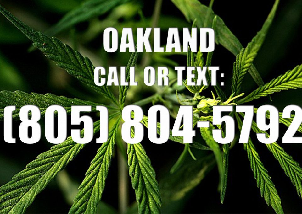 Oakland-Clones-for-Sale