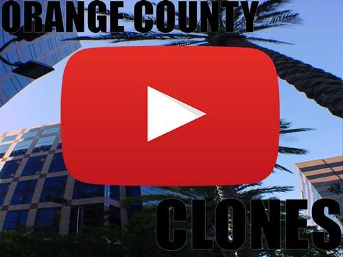 Orange County Clones for Sale