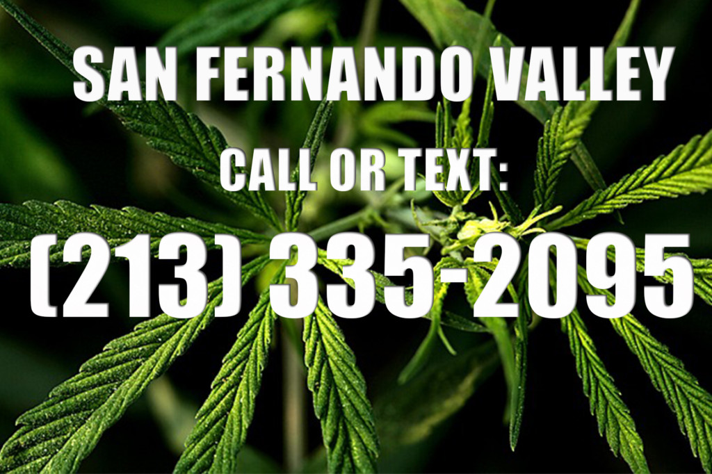San Fernando Valley Clones for Sale