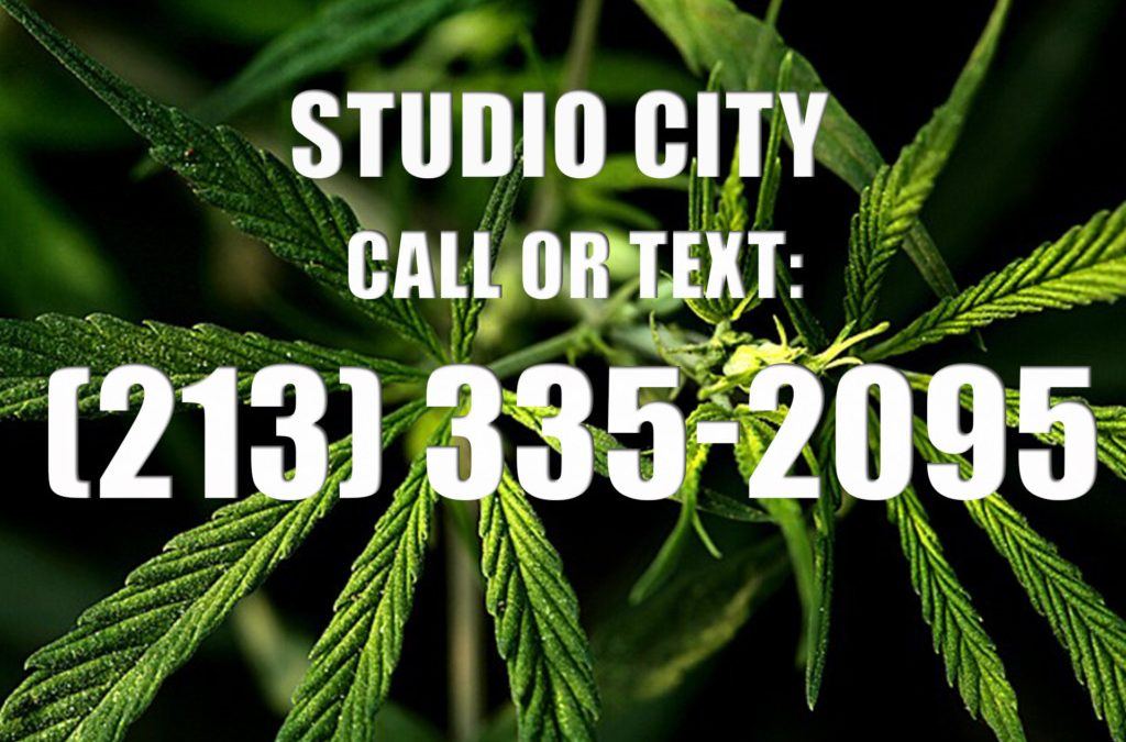 Studio-City-Clones-for-Sale