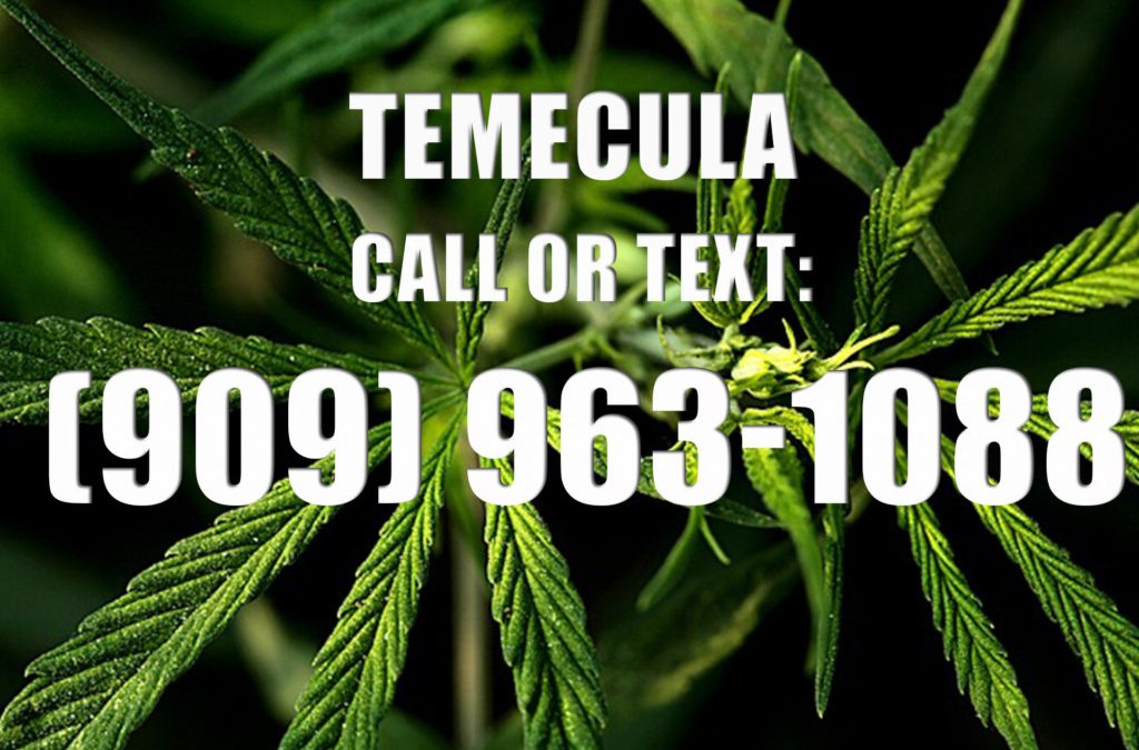 Temecula-Clones-for-Sale